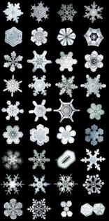 eb805baf8da81780d169ef996341ae74-snow-flake-tattoo-snow-tattoo.jpg