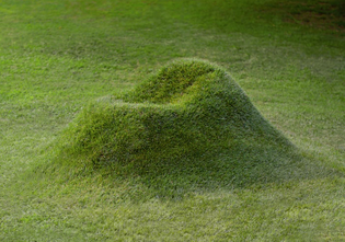 growing-grass-armchair-terra-nucleo-andrea-sanna-piergiorgio-robino-covervideo.jpg