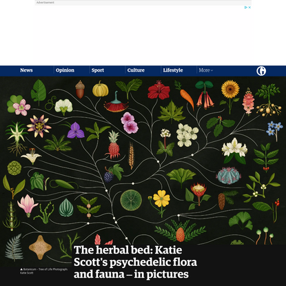 The herbal bed: Katie Scott's psychedelic flora and fauna - in pictures