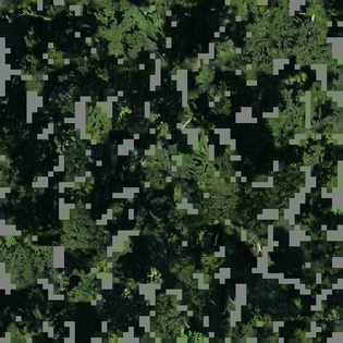 out_map_19_327470_154481_1.jpg