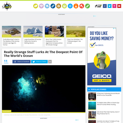 Really Strange Stuff Lurks At The Deepest Point Of The World's Ocean