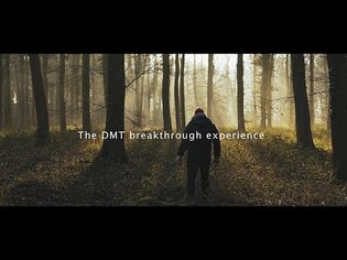 DMT breakthrough experience explained (dmt trip)