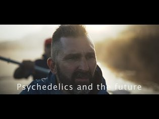 Our psychedelic future with dimethyltryptamine and ayahuasca