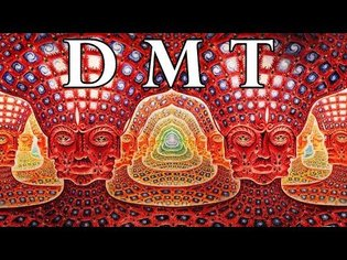 DMT: Portal to the Spirit World
