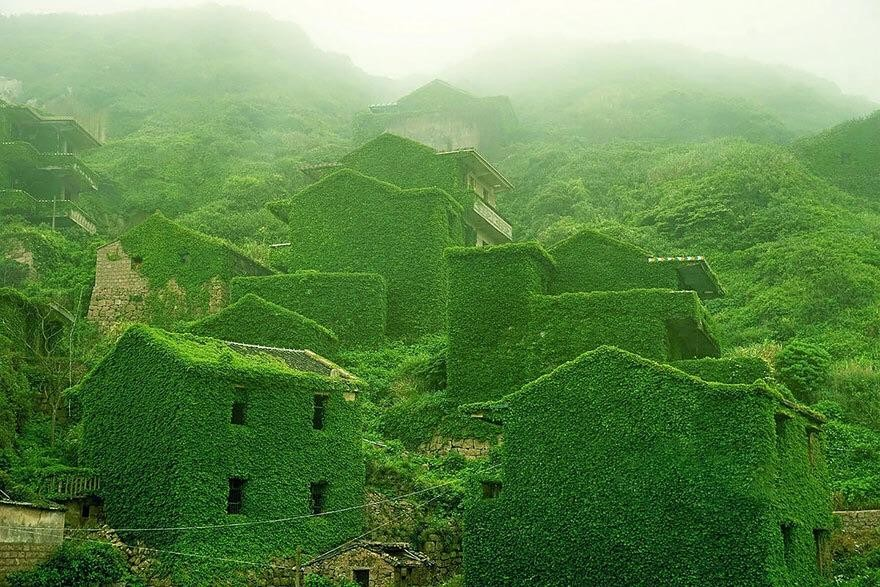 Abandoned Chinese fishing village reclaimed by nature