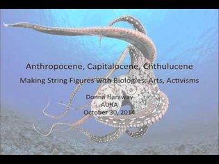 Anthropocene, Capitalocene, Chthulucene: Making String Figures with Biologies, Arts, Activisms