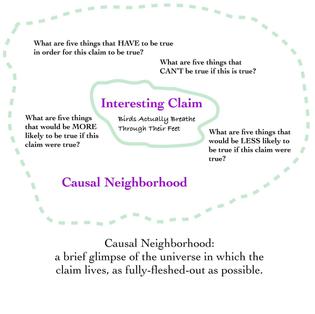 Causal Neighborhood