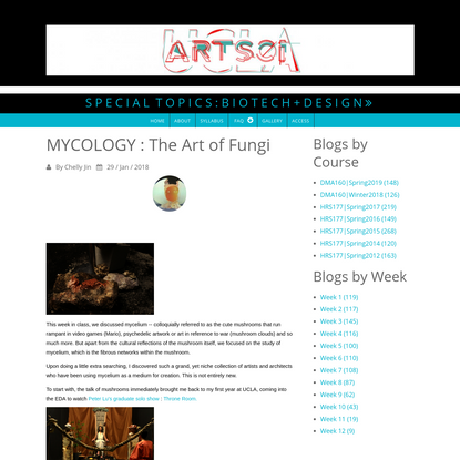 MYCOLOGY : The Art of Fungi | S P E C I A L T O P I C S : B I O T E C H + D E S I G N