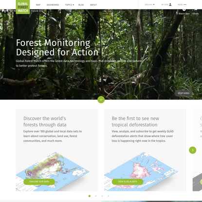 Browser Not Supported   Global Forest Watch