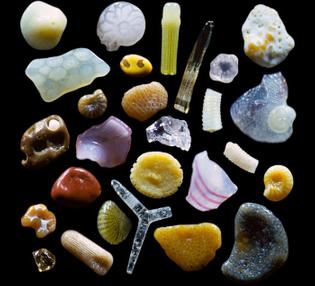 sand-grains-under-microscope-gary-greenberg-coverimage.jpg