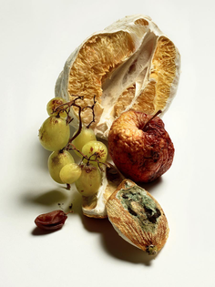 thomasdemonaco-dry-fruits-900x1200.jpg