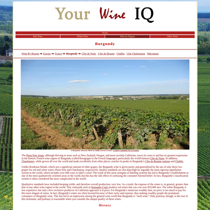 Wine Facts Online: Kinds of Wine: Wine By Region: Europe: France: Burgundy