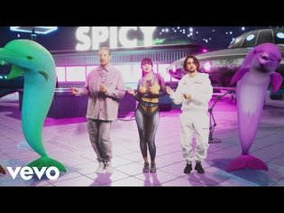 Herve Pagez, Diplo - Spicy (Official Music Video) ft. Charli XCX - YouTube