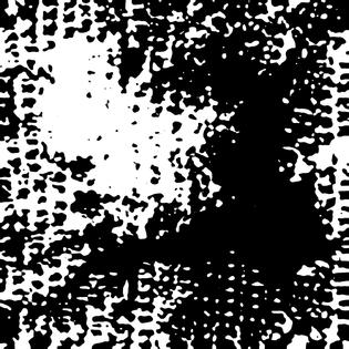 080__inceptionv4-mixed_3a-bitmap.png