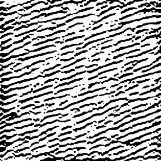 080__resnetv2_152-block1_unit1-bitmap.png