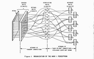 pasquinelli-perceptron-2web.jpg-1440