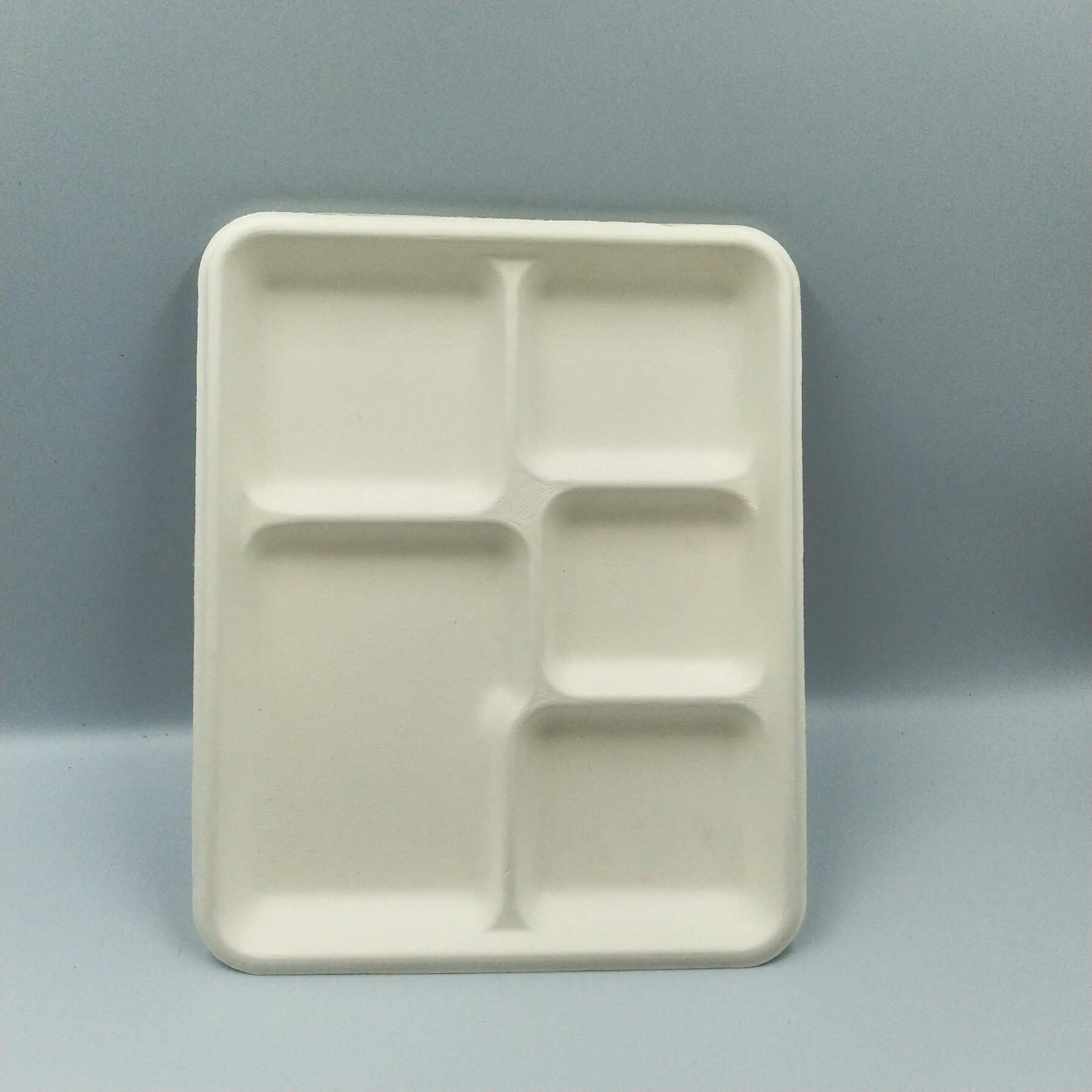 disposable-5-compartment-tray-biodegradable-bagasse-food.jpg