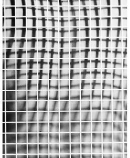 Back/Grid 2011, Talia Chetrit