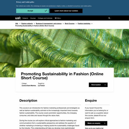 Promoting Sustainability in Fashion (Online Short Course)