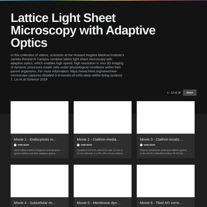 Lattice Light Sheet Microscopy with Adaptive Optics on Vimeo