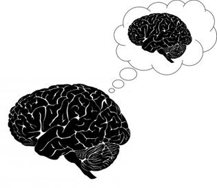 human-brain_by-smokedsalmon_freedigitalphotos-net-png.jpg