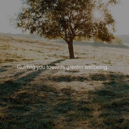 Sensei │ Guiding you towards greater wellbeing.