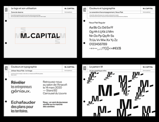 m_capital_guidelines.png