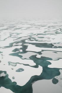 TD-features-Telegraph_Arctic005.jpg