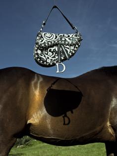 Dior x Cristina de Middel