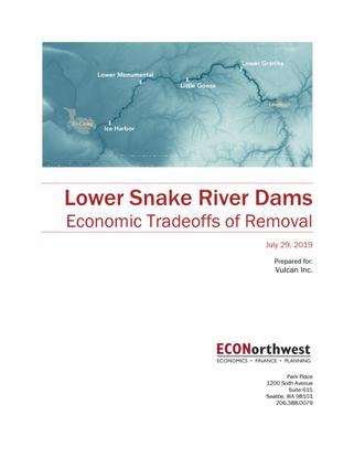 lsrd_economic_tradeoffs_report.pdf
