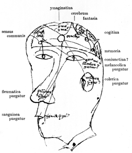 the_brain-_and_ways_of_excretion_of_humours-_circa_1428._wellcome_m0000437.jpg
