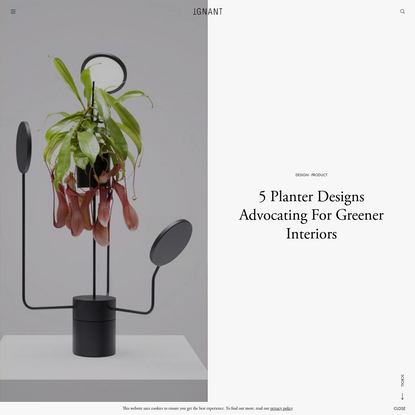 5 Planter Designs Advocating For Greener Interiors - IGNANT