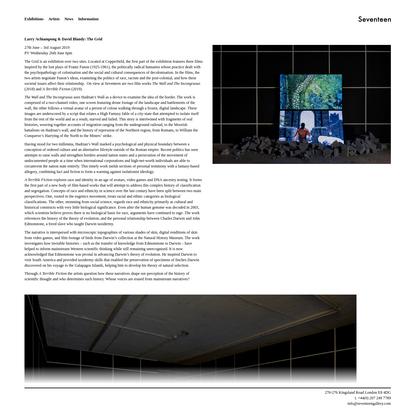 Larry Achiampong & David Blandy: The Grid - Seventeen