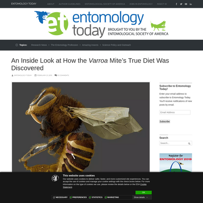 An Inside Look at How the Varroa Mite's True Diet Was Discovered