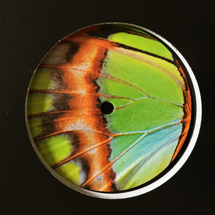 Pearson Sound – Robin Chasing Butterflies