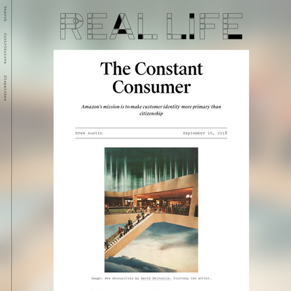 The Constant Consumer - Real Life
