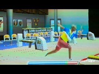 Cory Arcangel: Pro Tools: Various Self Playing Bowling Games, 2011