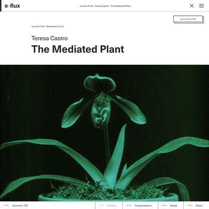 The Mediated Plant