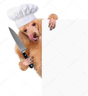 depositphotos_40480827-stock-photo-dog-chef.jpg