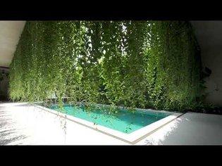 Tropical plants cover villas at Wyndham Garden Phú Quốc resort in Vietnam