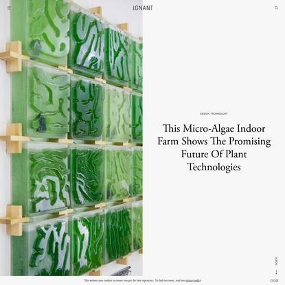 This Micro-Algae Indoor Farm Shows The Promising Future Of Plant Technologies - IGNANT