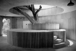 masp-exhibits-tarsila-amaral-and-lina-bo-nardi.jpg