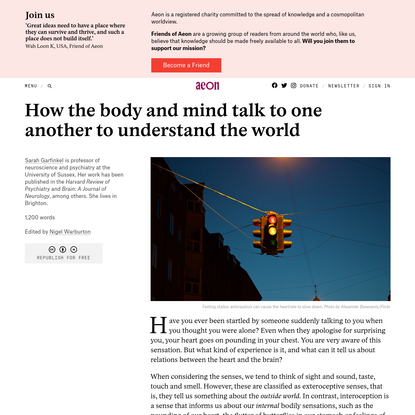 How the body and mind talk to one another to understand the world - Sarah Garfinkel   Aeon Ideas
