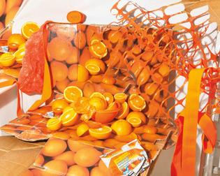 oranges-working-ii-521x417.jpg