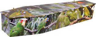 coffin-wildlife-zoom_1.jpg