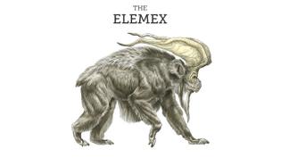 meet-elemex.jpg
