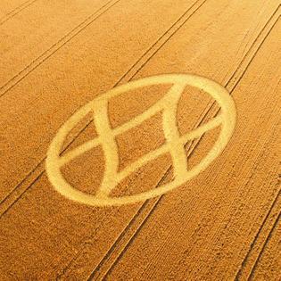 oligarchy-crop-circle.jpg