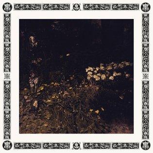 Pale Bloom, by Sarah Davachi
