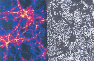 dark-matter-v-brain-neurons.jpg