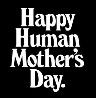 matthijsmattvanleeuwenhappyhumansmotherdaymothernewyorksquare-800x819.jpg